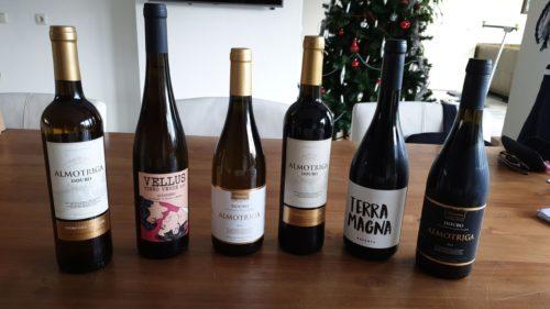 Ontdek de Portugese wijnen