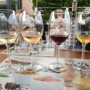 """Wijnproeverij     """" Verassende  wijnen  van  onder  de  € 9,99."""""""
